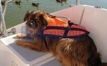 Mentőmellény kutya XXL size +40 kg